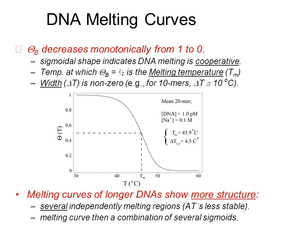 DNA Melting Curves  B decreases monotonically from 1 to 0.