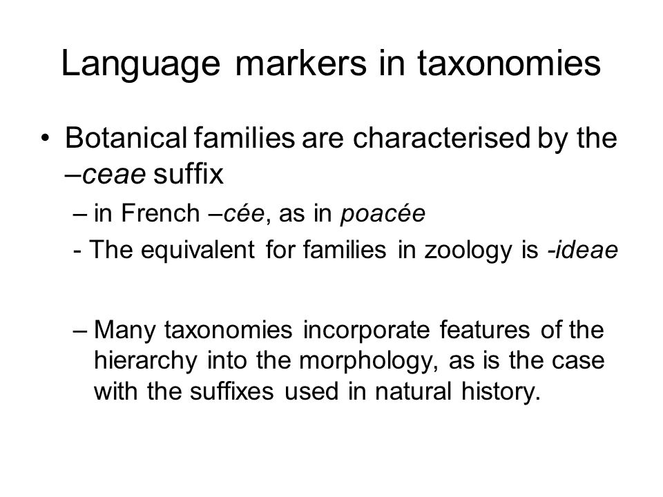 Language markers in taxonomies Botanical families are characterised by the –ceae suffix –in French –cée, as in poacée - The equivalent for families in zoology is -ideae –Many taxonomies incorporate features of the hierarchy into the morphology, as is the case with the suffixes used in natural history.