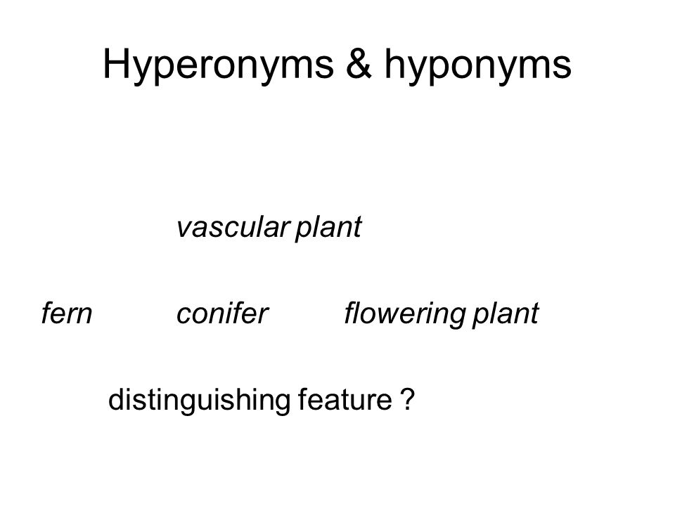 Hyperonyms & hyponyms vascular plant fernconifer flowering plant distinguishing feature