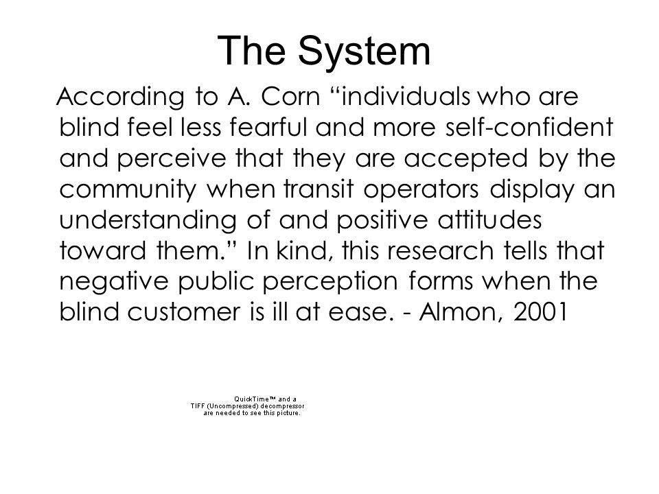 """The System According to A. Corn """"individuals who are blind feel less fearful and more self-confident and perceive that they are accepted by the commun"""