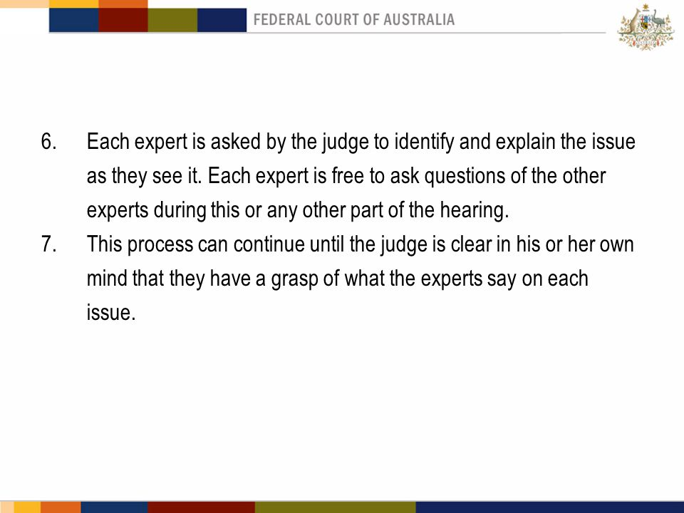 6.Each expert is asked by the judge to identify and explain the issue as they see it. Each expert is free to ask questions of the other experts during