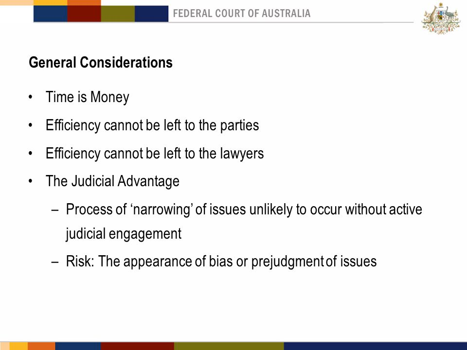 General Considerations Time is Money Efficiency cannot be left to the parties Efficiency cannot be left to the lawyers The Judicial Advantage –Process of 'narrowing' of issues unlikely to occur without active judicial engagement –Risk: The appearance of bias or prejudgment of issues