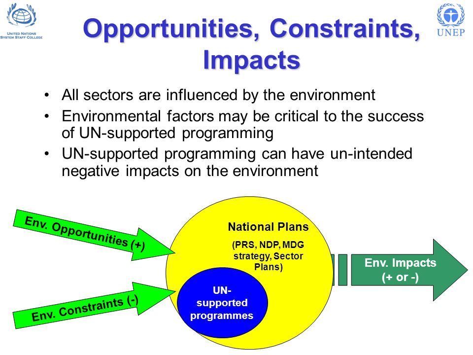 Environmental Mainstreaming: Key elements at country level Understand and monitor the linkages between major development problems and the environment Put environment linkages into national development processes and their products (PRSs; MDG strategies) Set priorities and develop strategic programmes (incl.