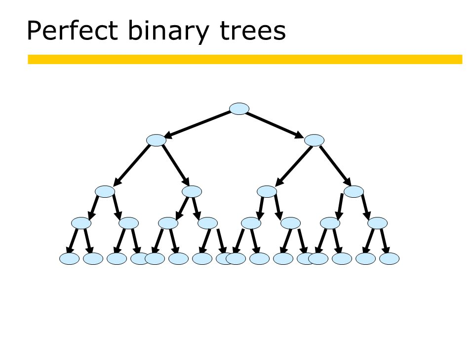 Perfect binary trees 13 266532 16 2665266526 6819 21 3124 26652665266526652665266526652665