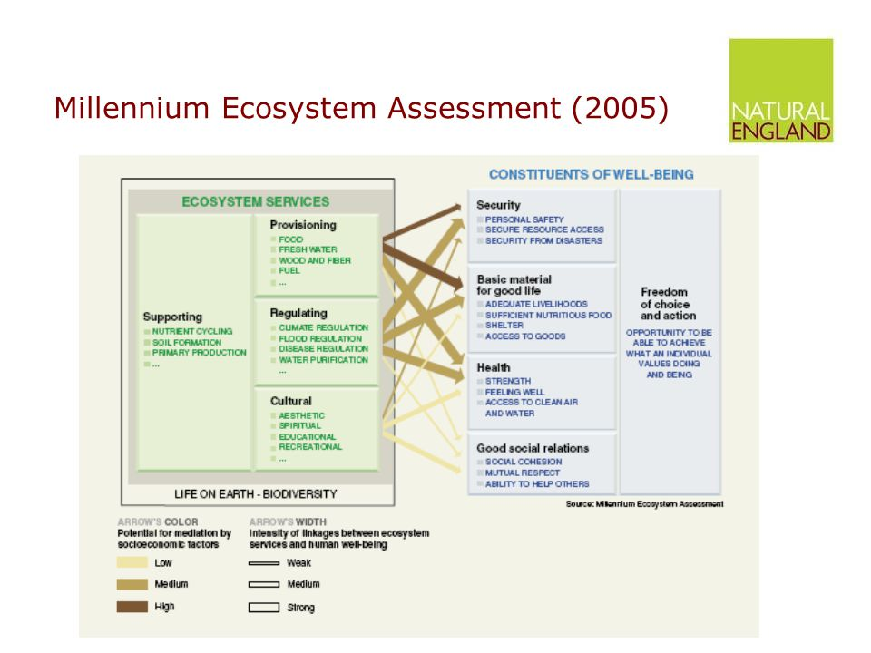 Ecosystem Services – making it real! T..... Or the good stuff we get from nature.