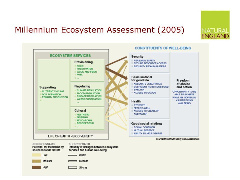 Millennium Ecosystem Assessment (2005)