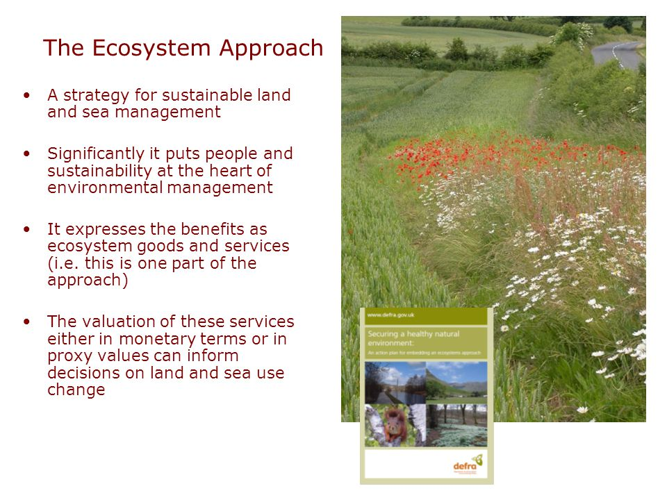 The Ecosystem Approach A strategy for sustainable land and sea management Significantly it puts people and sustainability at the heart of environmental management It expresses the benefits as ecosystem goods and services (i.e.