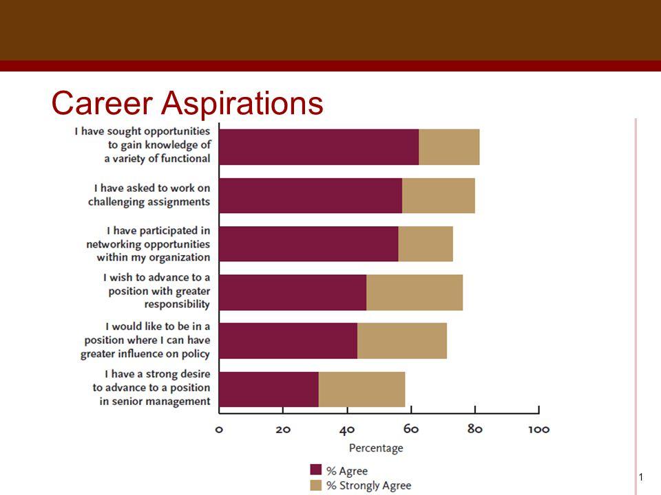 Dr. Brad Harrington, ©2011 Career Aspirations