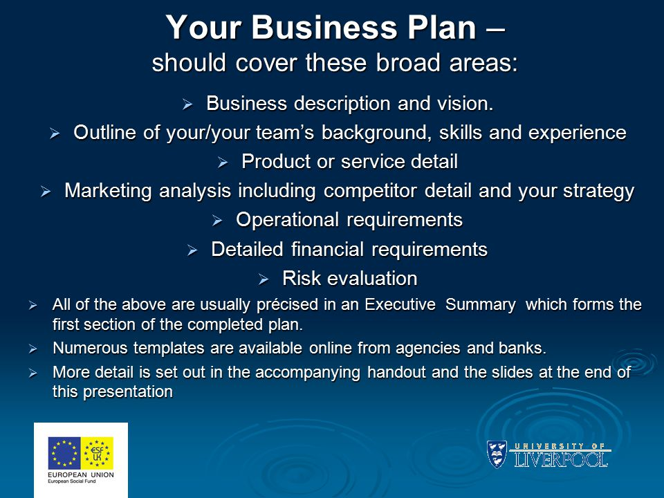 Your Business Plan – should cover these broad areas:  Business description and vision.