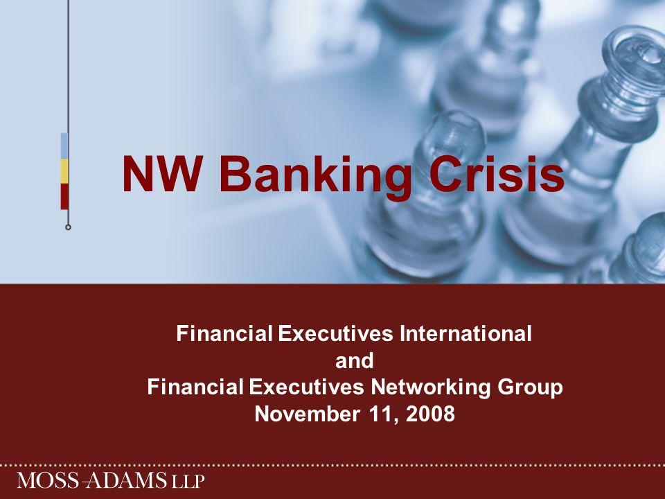 NW Banking Crisis Financial Executives International and Financial Executives Networking Group November 11, 2008