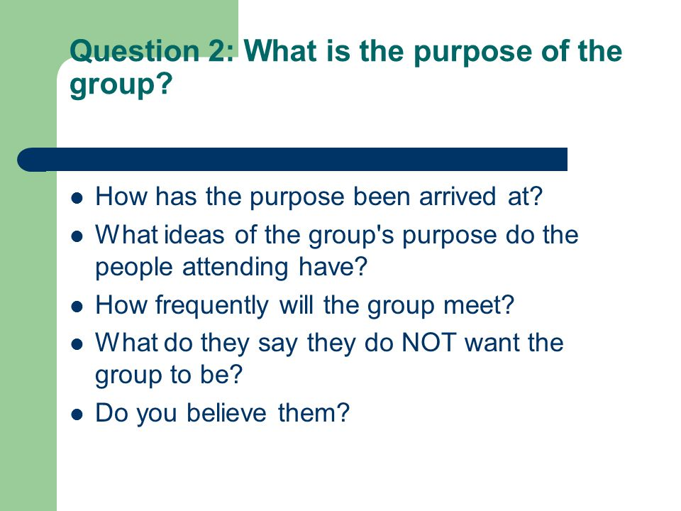 Question 2: What is the purpose of the group? How has the purpose been arrived at? What ideas of the group's purpose do the people attending have? How