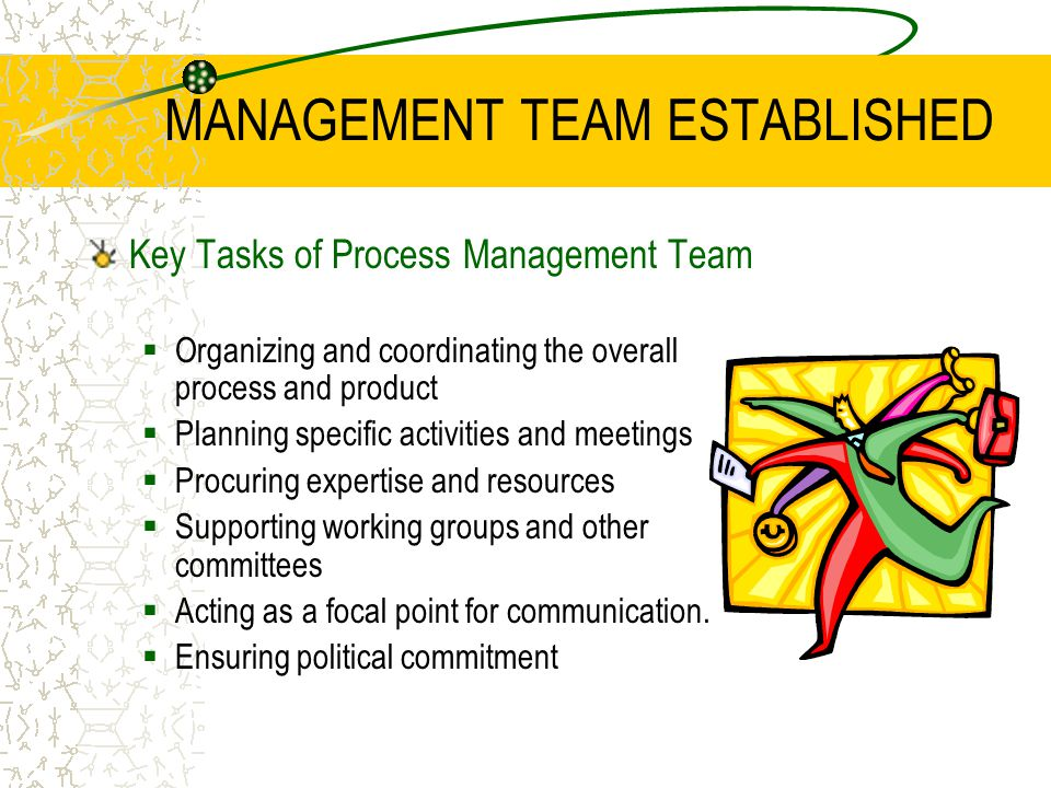 MANAGEMENT TEAM ESTABLISHED Minimum Team Skills  Team leadership and project management  Communication skills - negotiation skills.