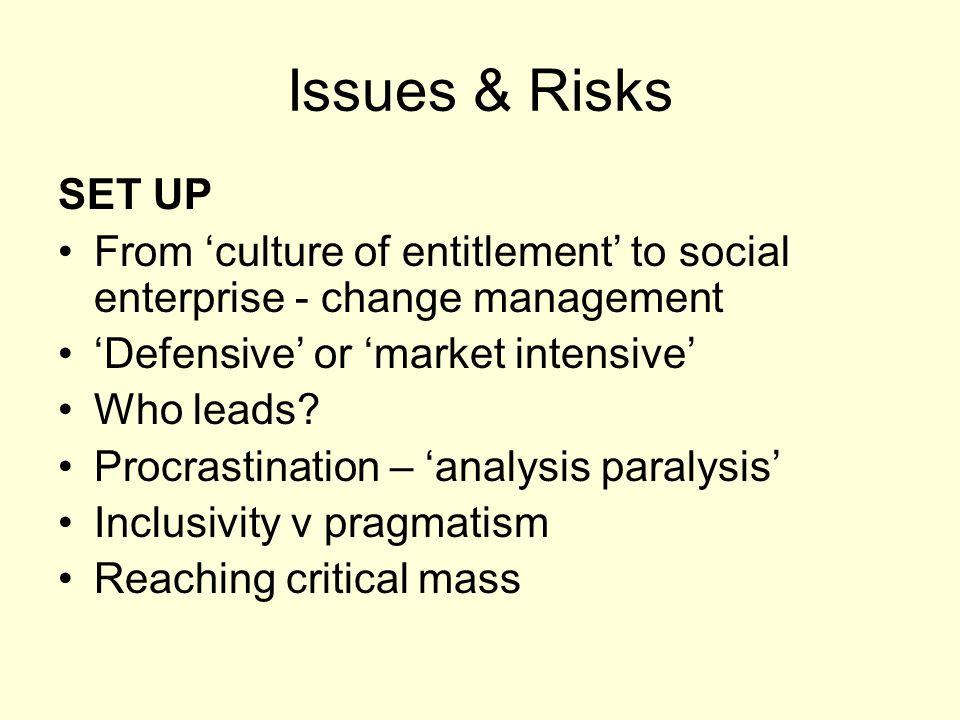 Issues & Risks SET UP From 'culture of entitlement' to social enterprise - change management 'Defensive' or 'market intensive' Who leads? Procrastinat