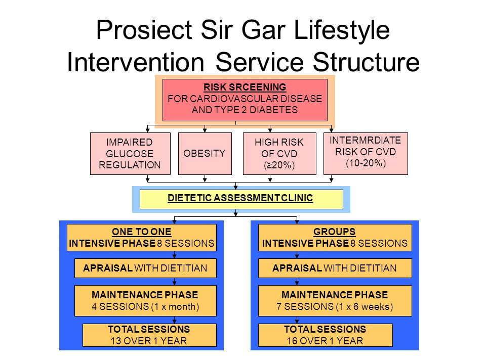 Prosiect Sir Gar Lifestyle Intervention Service Structure RISK SRCEENING FOR CARDIOVASCULAR DISEASE AND TYPE 2 DIABETES INTERMRDIATE RISK OF CVD (10-20%) HIGH RISK OF CVD (≥20%) IMPAIRED GLUCOSE REGULATION OBESITY DIETETIC ASSESSMENT CLINIC ONE TO ONE INTENSIVE PHASE 8 SESSIONS GROUPS INTENSIVE PHASE 8 SESSIONS APRAISAL WITH DIETITIAN MAINTENANCE PHASE 4 SESSIONS (1 x month) MAINTENANCE PHASE 7 SESSIONS (1 x 6 weeks) TOTAL SESSIONS 13 OVER 1 YEAR TOTAL SESSIONS 16 OVER 1 YEAR