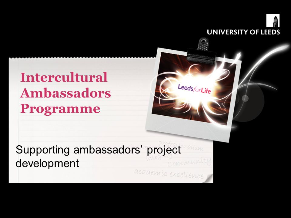 Intercultural Ambassadors Programme Supporting ambassadors' project development