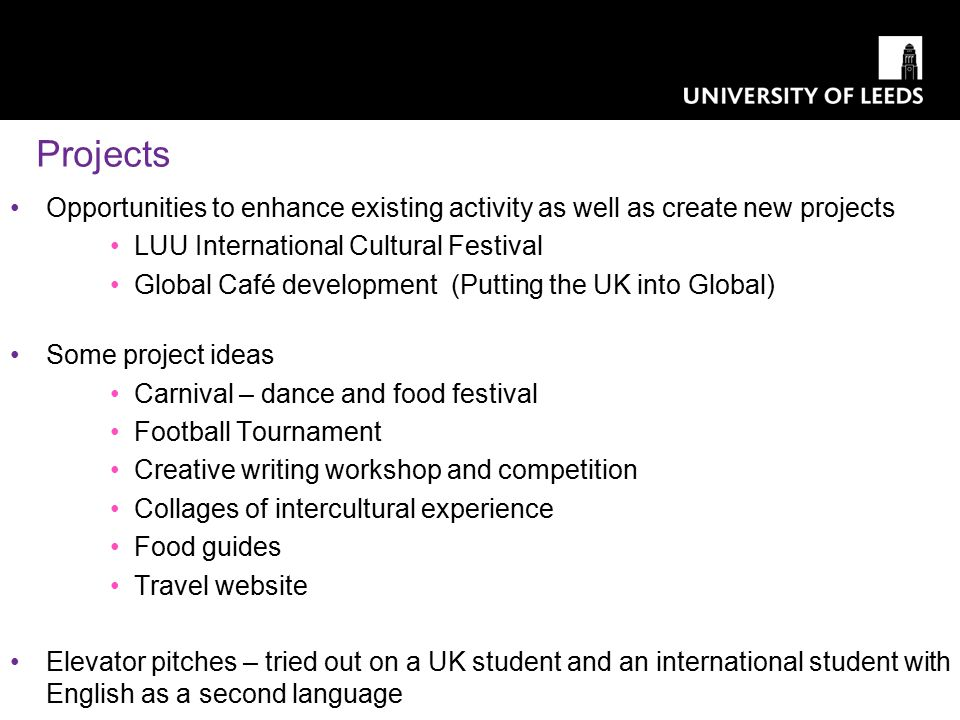 Projects Opportunities to enhance existing activity as well as create new projects LUU International Cultural Festival Global Café development (Puttin