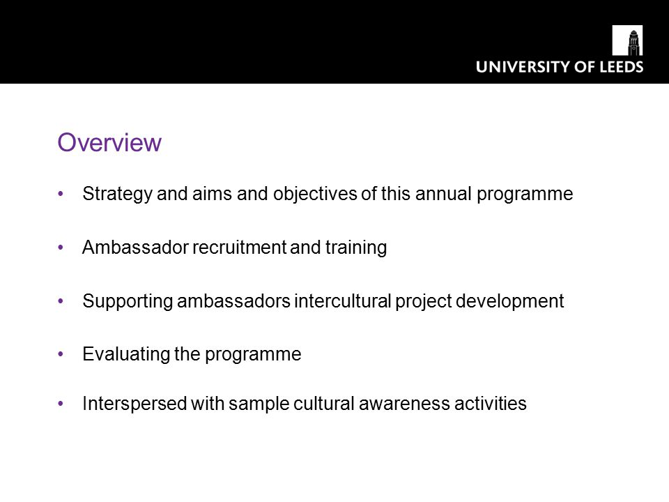 Overview Strategy and aims and objectives of this annual programme Ambassador recruitment and training Supporting ambassadors intercultural project de