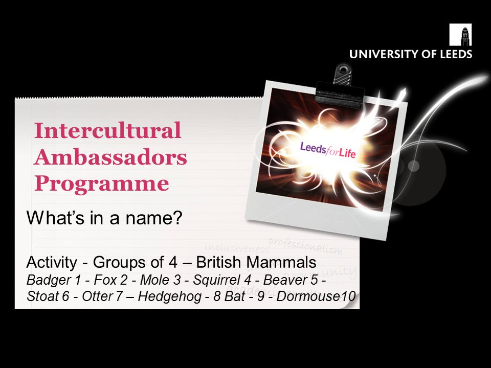 Intercultural Ambassadors Programme What's in a name? Activity - Groups of 4 – British Mammals Badger 1 - Fox 2 - Mole 3 - Squirrel 4 - Beaver 5 - Sto
