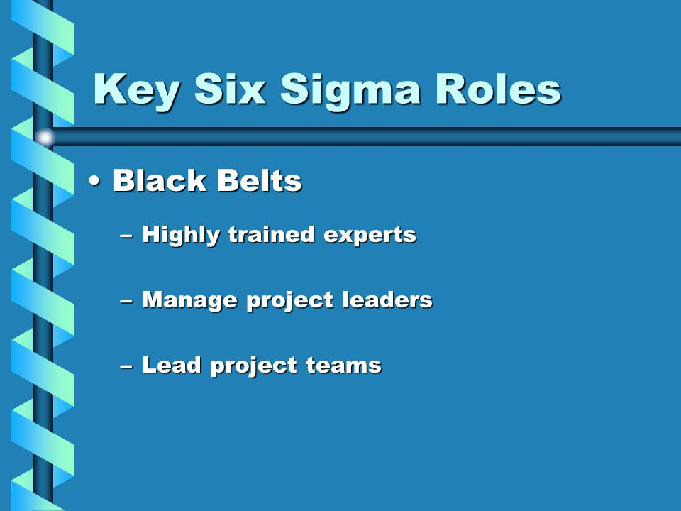 Key Six Sigma Roles Black BeltsBlack Belts –Highly trained experts –Manage project leaders –Lead project teams