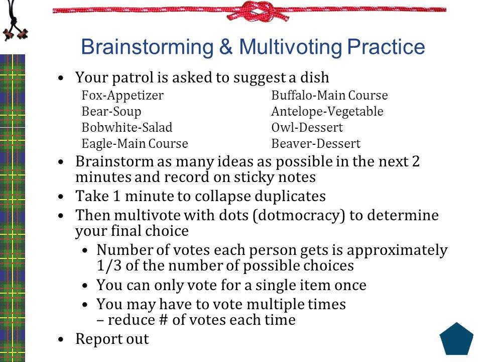 Brainstorming & Multivoting Practice Your patrol is asked to suggest a dish Fox-AppetizerBuffalo-Main Course Bear-SoupAntelope-Vegetable Bobwhite-Sala