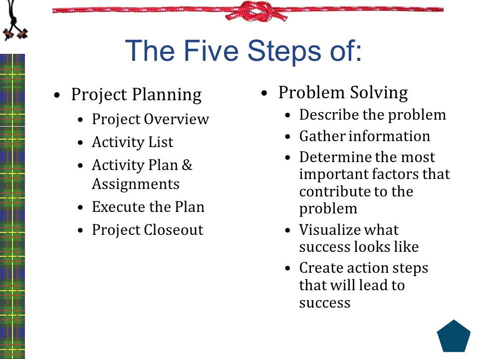 The Five Steps of: Project Planning Project Overview Activity List Activity Plan & Assignments Execute the Plan Project Closeout Problem Solving Descr