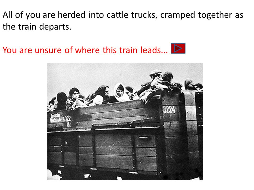 All of you are herded into cattle trucks, cramped together as the train departs.