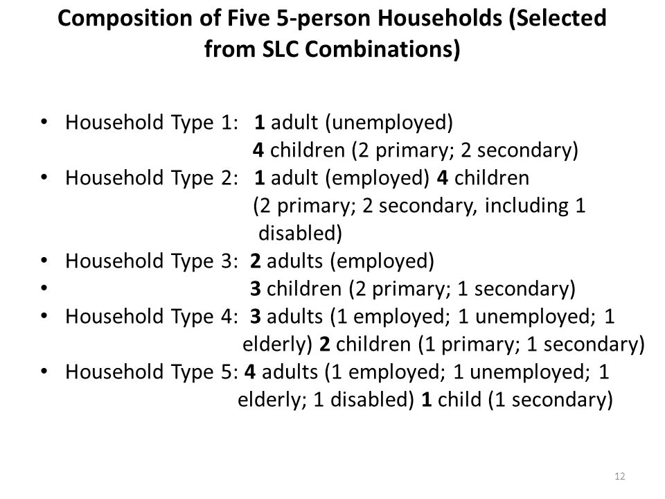 Composition of Five 5-person Households (Selected from SLC Combinations) Household Type 1: 1 adult (unemployed) 4 children (2 primary; 2 secondary) Ho