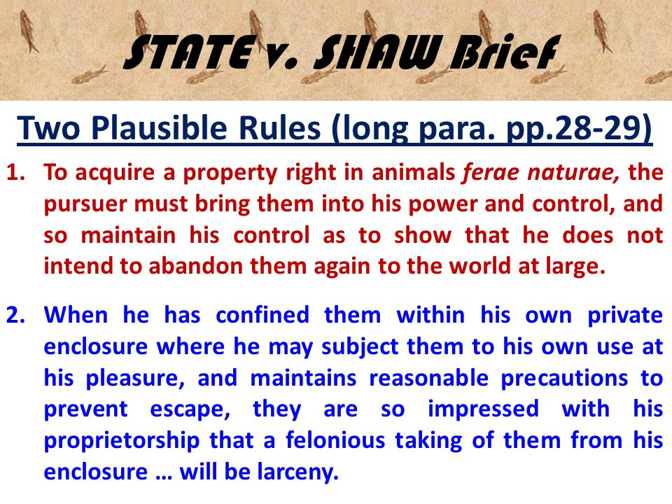 STATE v. SHAW Brief Two Plausible Rules (long para. pp.28-29) 1.To acquire a property right in animals ferae naturae, the pursuer must bring them into