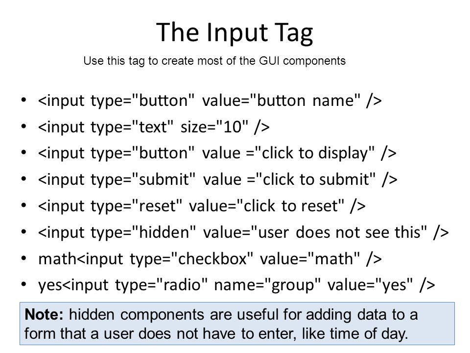 The Input Tag math yes Use this tag to create most of the GUI components Note: hidden components are useful for adding data to a form that a user does not have to enter, like time of day.