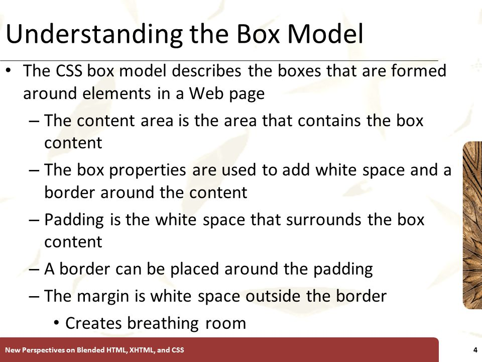 XP Understanding the Box Model The CSS box model describes the boxes that are formed around elements in a Web page – The content area is the area that contains the box content – The box properties are used to add white space and a border around the content – Padding is the white space that surrounds the box content – A border can be placed around the padding – The margin is white space outside the border Creates breathing room New Perspectives on Blended HTML, XHTML, and CSS4