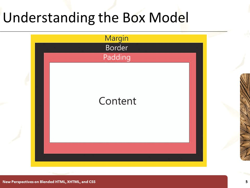 XP Understanding the Padding and Margin Properties Padding properties control the internal white space Setting padding: To set the padding within an element, use: padding: width; where width is the size of the padding using one of the CSS units of measure.