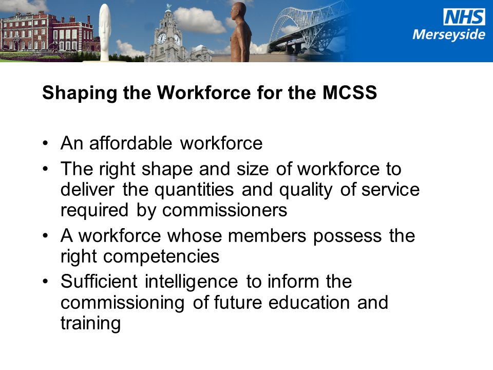 Shaping the Workforce for the MCSS An affordable workforce The right shape and size of workforce to deliver the quantities and quality of service requ
