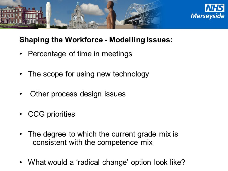 Shaping the Workforce - Modelling Issues: Percentage of time in meetings The scope for using new technology Other process design issues CCG priorities The degree to which the current grade mix is consistent with the competence mix What would a 'radical change' option look like
