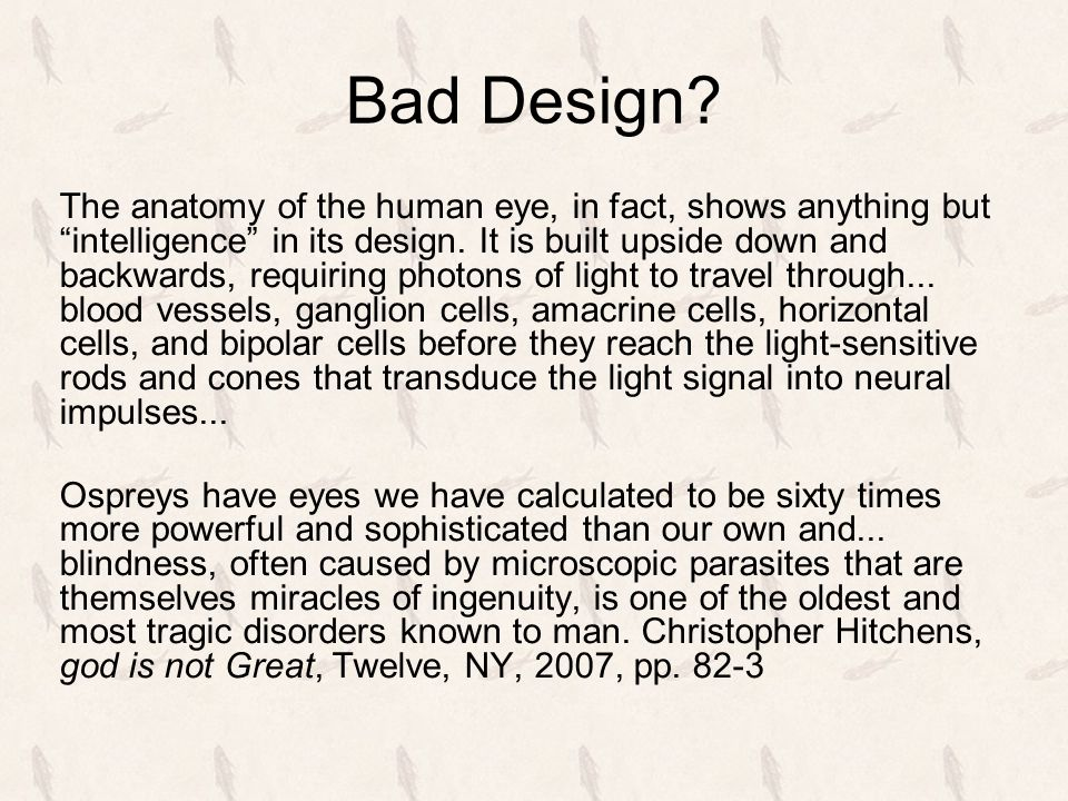 """Bad Design? The anatomy of the human eye, in fact, shows anything but """"intelligence"""" in its design. It is built upside down and backwards, requiring p"""
