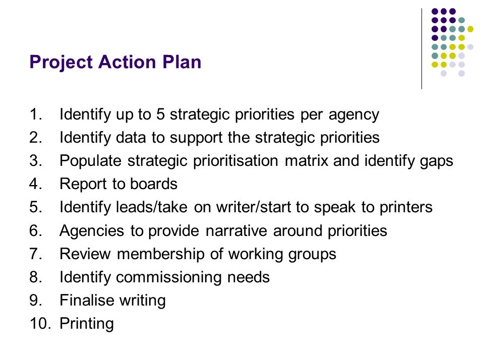 Project Action Plan 1.Identify up to 5 strategic priorities per agency 2.Identify data to support the strategic priorities 3.Populate strategic prioritisation matrix and identify gaps 4.Report to boards 5.Identify leads/take on writer/start to speak to printers 6.Agencies to provide narrative around priorities 7.Review membership of working groups 8.Identify commissioning needs 9.Finalise writing 10.Printing