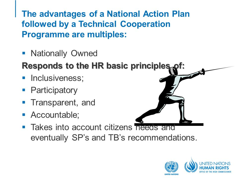 The advantages of a National Action Plan followed by a Technical Cooperation Programme are multiples:  Nationally Owned Responds to the HR basic principles of:  Inclusiveness;  Participatory  Transparent, and  Accountable;  Takes into account citizens needs and eventually SP's and TB's recommendations.