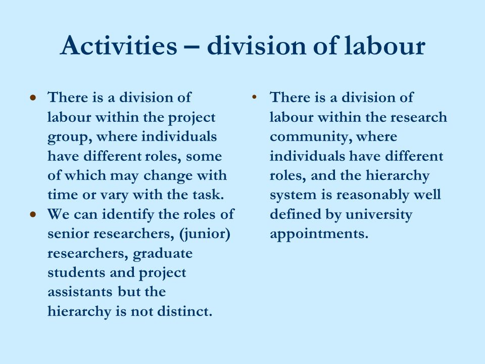 Activities – division of labour  There is a division of labour within the project group, where individuals have different roles, some of which may change with time or vary with the task.