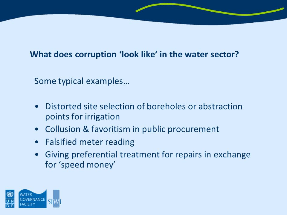 What does corruption 'look like' in the water sector.