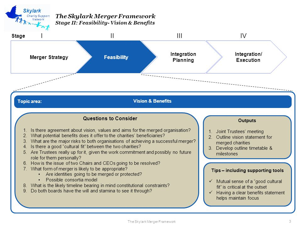 The Skylark Merger Framework 4 Charity Support Network Skylark Merger Strategy Feasibility Integration Planning Integration/ Execution IIIIIIIV The Skylark Merger Framework Stage II: Feasibility – Service Continuity Service Continuity Questions to Consider 1.Is there enough capacity to provide service continuity during the merger.