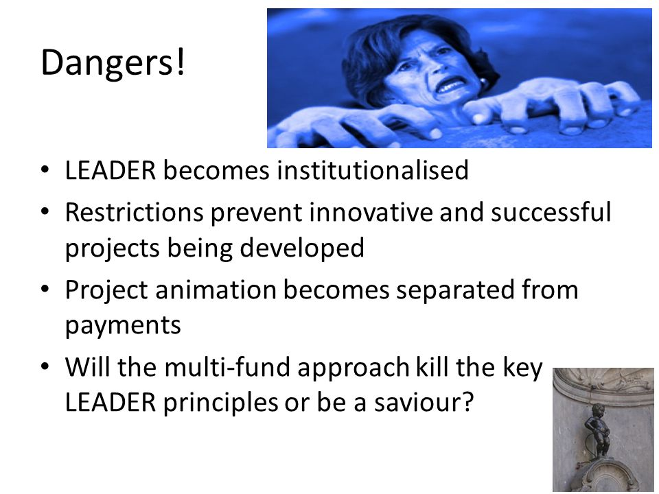 Dangers! LEADER becomes institutionalised Restrictions prevent innovative and successful projects being developed Project animation becomes separated
