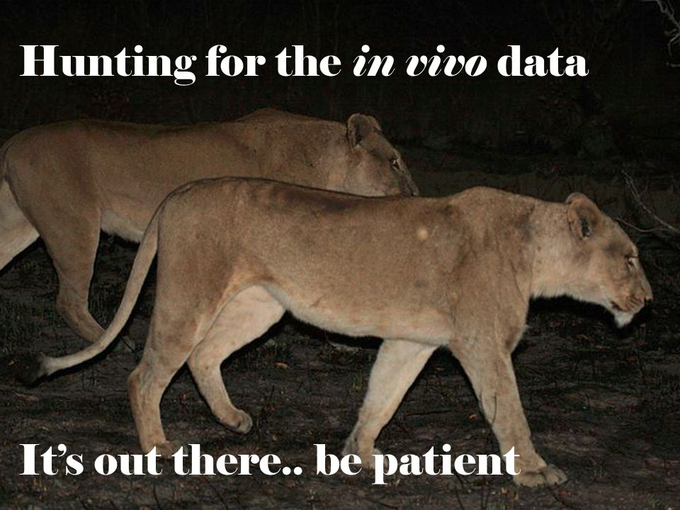 Hunting for the in vivo data It's out there.. be patient