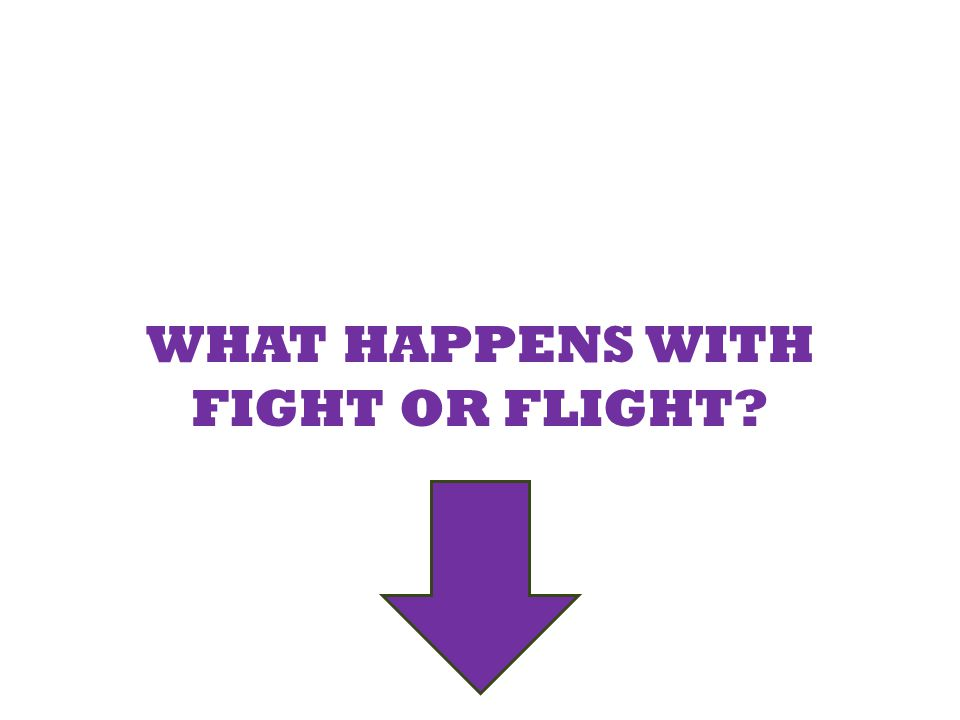 WHAT HAPPENS WITH FIGHT OR FLIGHT?