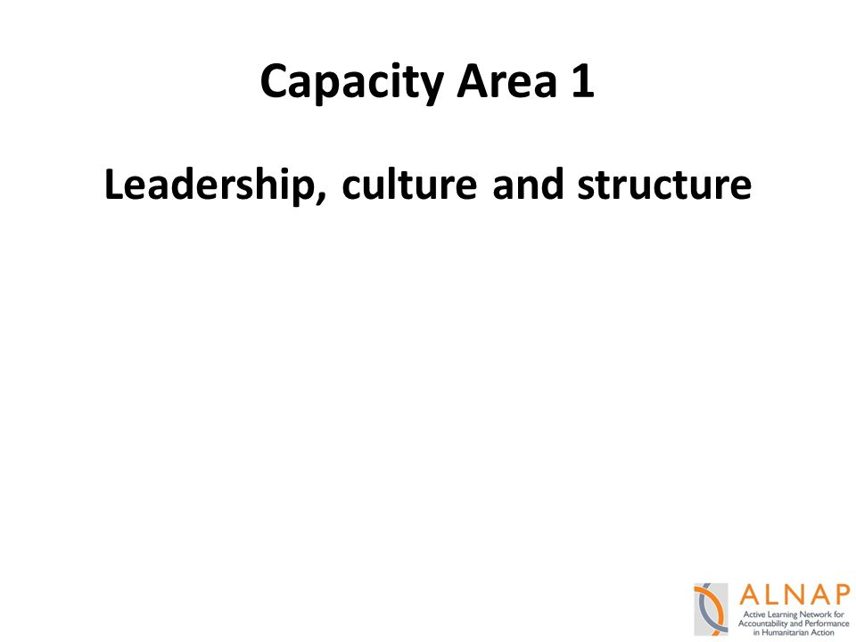 Capacity Area 1 Leadership, culture and structure