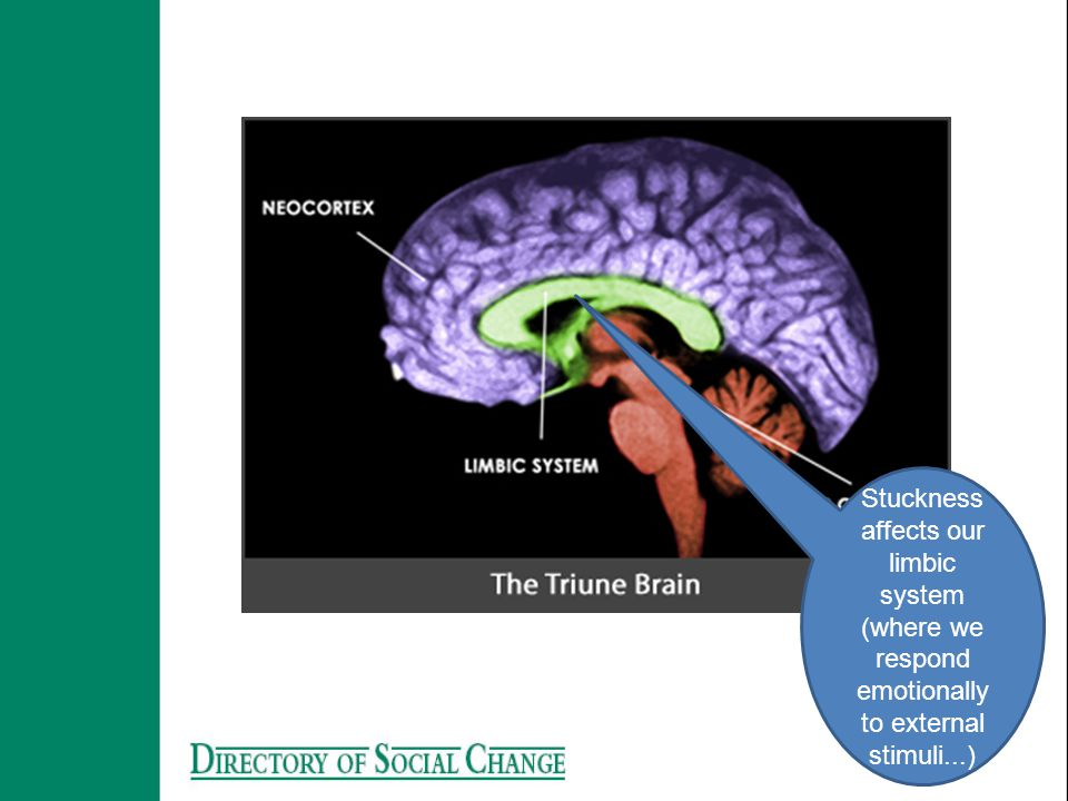 Stuckness affects our limbic system (where we respond emotionally to external stimuli...)