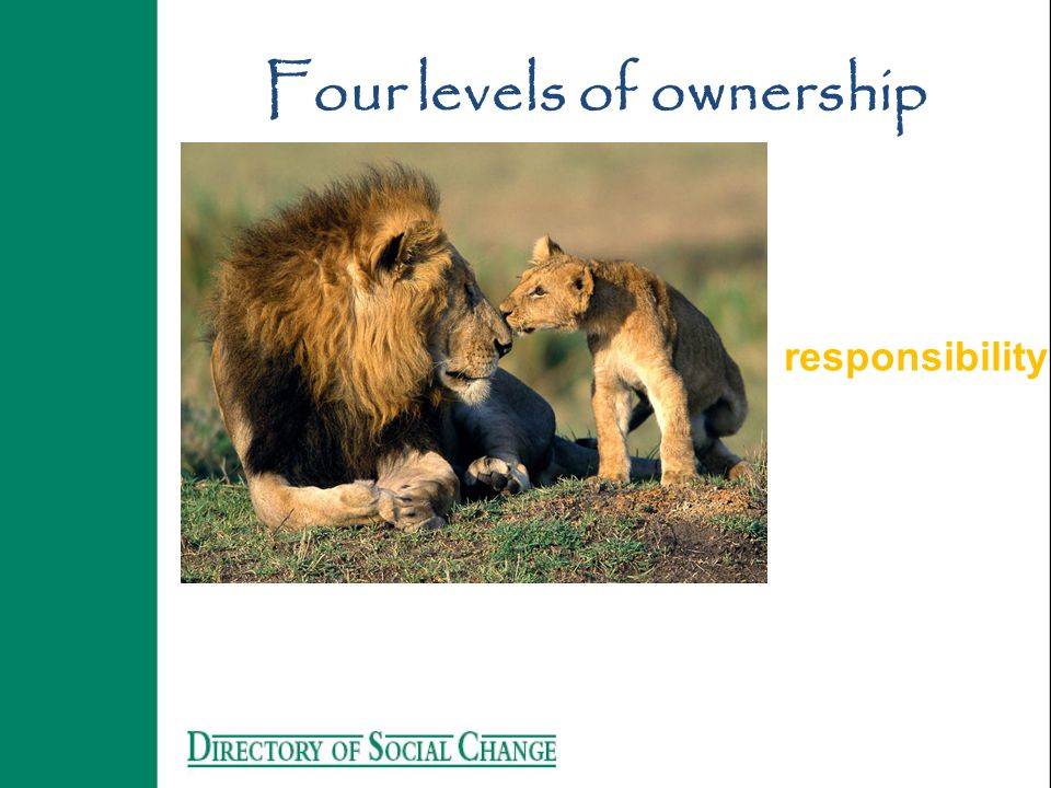 responsibility Four levels of ownership