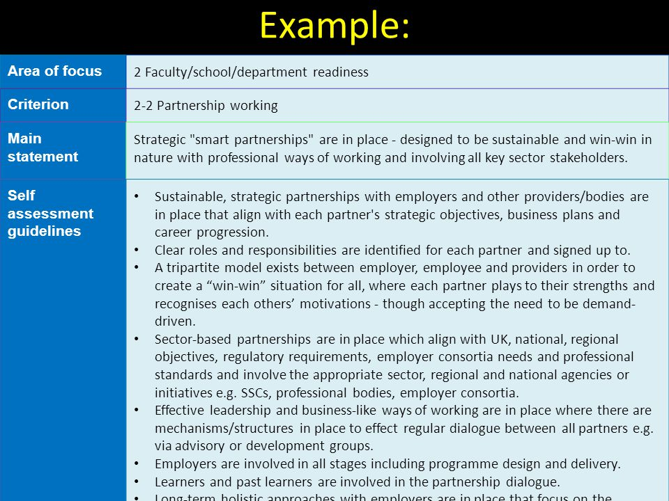 Example: Area of focus 2 Faculty/school/department readiness Criterion 2-2 Partnership working Main statement Strategic