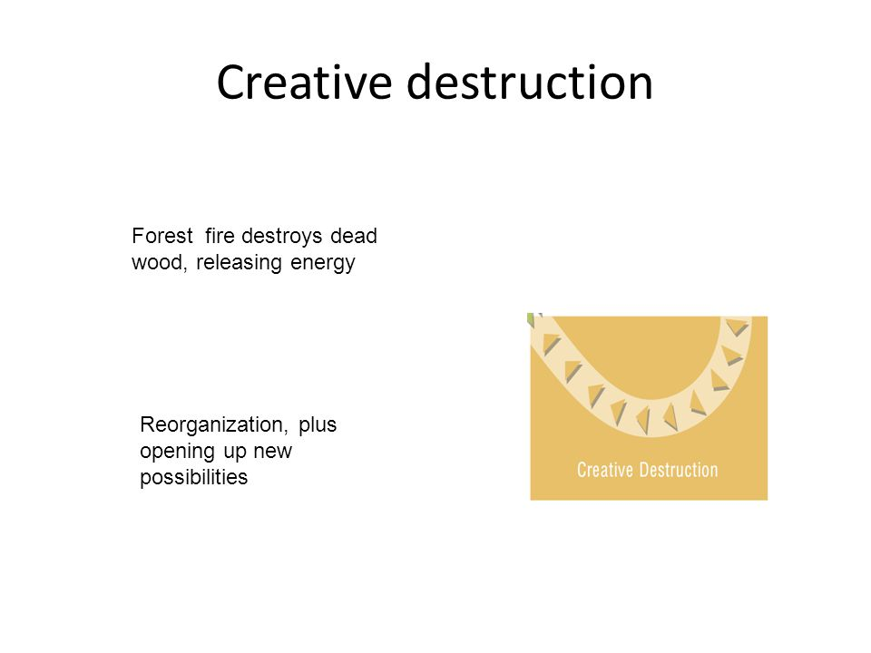 Creative destruction Forest fire destroys dead wood, releasing energy Reorganization, plus opening up new possibilities