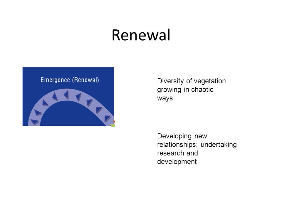 Renewal Diversity of vegetation growing in chaotic ways Developing new relationships; undertaking research and development