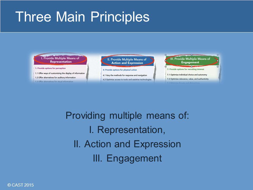 © CAST 2015 Three Main Principles Providing multiple means of: I.