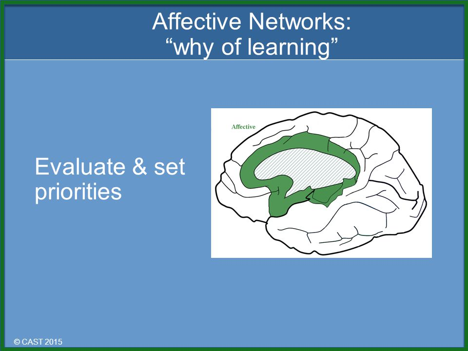 © CAST 2015 Evaluate & set priorities Affective Networks: why of learning